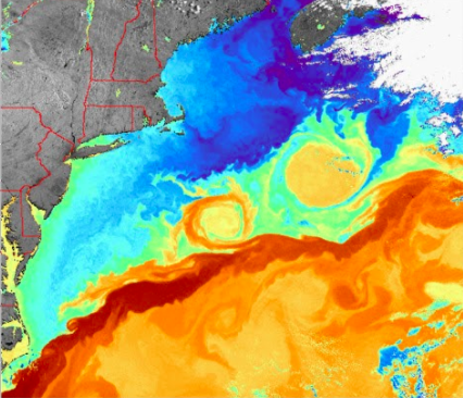 A satellite image of the Gulf Stream, taken using thermal imaging