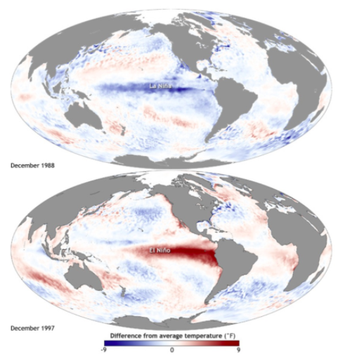 Deviation from the average water temperature at the ocean surface during the La Niña phenomenon in 1988 and El Niño in 1997 (in degrees Fahrenheit)